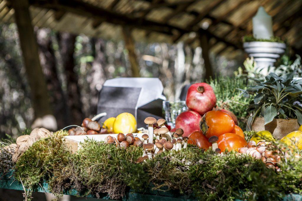 funghi e melgrani 1 1024x683 - Tuscan Excelsia per Mercedes-Benz: evento dal sapore country